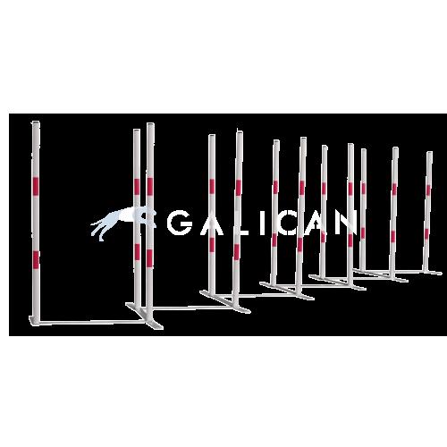 Slalom Zigzag