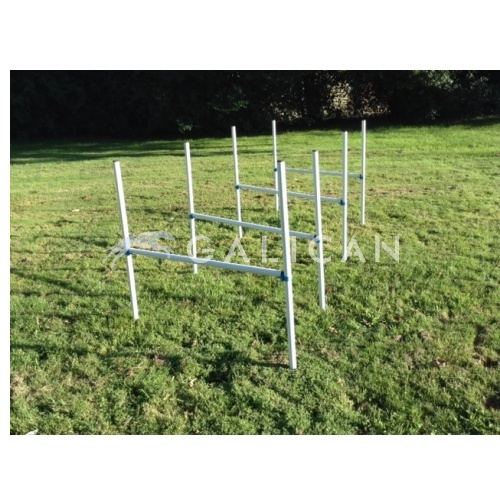Set de entrenamiento 4x1